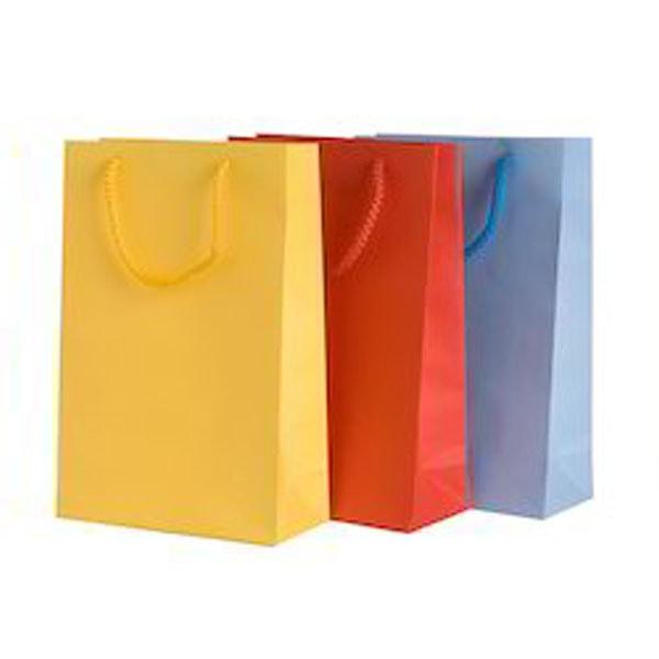 8e4cdea600 Paper Shopping Bags Manufacturer Supplier Distributor Exporter ...